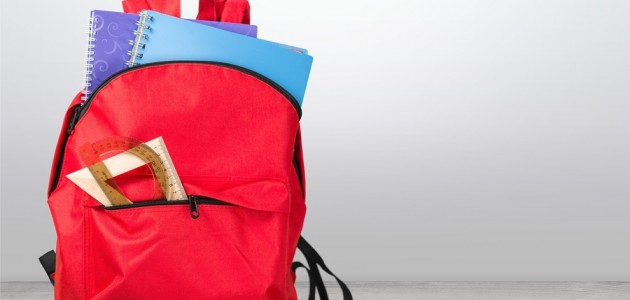 School backpack back full background isolated educational